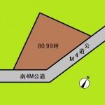 埼玉 さいたま市 土地 岩槻駅 80坪